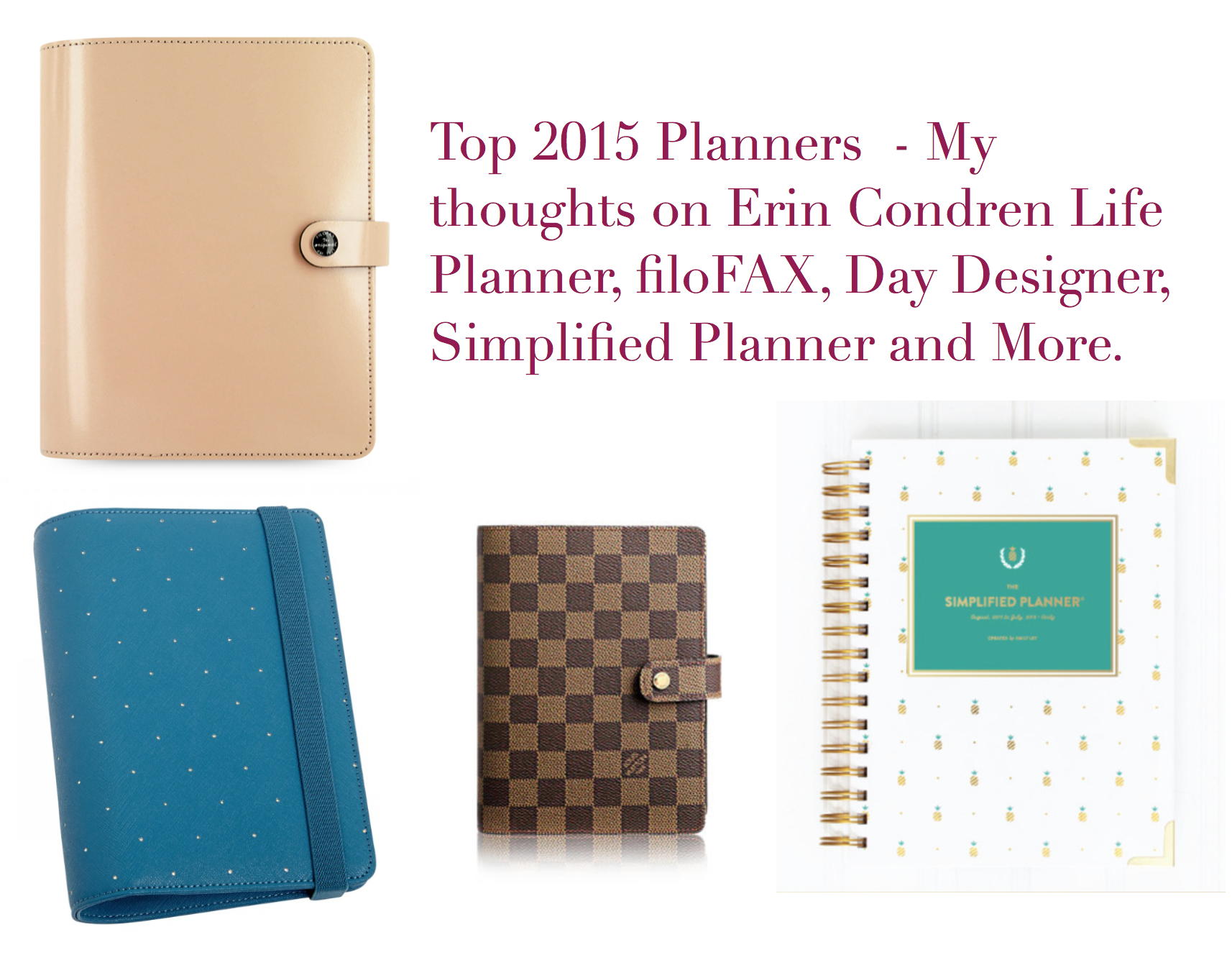 Top 2015 Planners  My Thoughts On The Erin Condren Lp